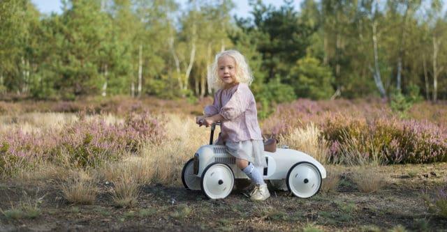 Największe wrzosowisko w Polsce czeka w pełnym rozkwicie – Dziecięca Mapa Warszawy