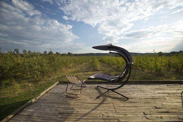 Agroturystyka Pod Jabłonią - miejsce pełne serdeczności