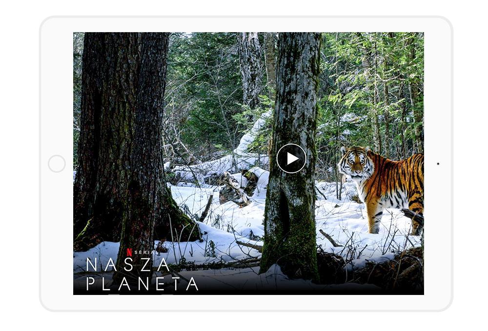Super seriale na Netflix to również propozycje dokumentalne i przyrodnicze.